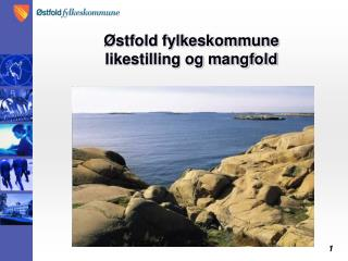 Østfold fylkeskommune likestilling og mangfold