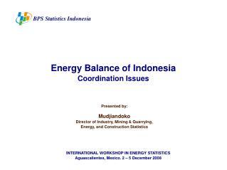 BPS Statistics Indonesia