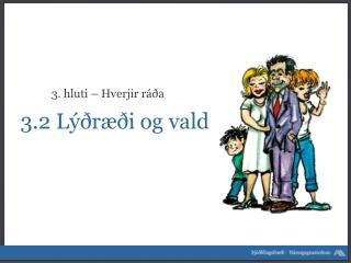 3.2  Lýðræði og vald