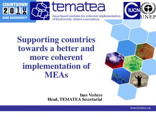 Supporting countries towards a better and more coherent implementation of MEAs Ines Verleye