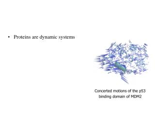 Proteins are dynamic systems