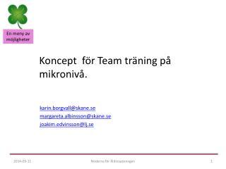Koncept  för Team träning på mikronivå.
