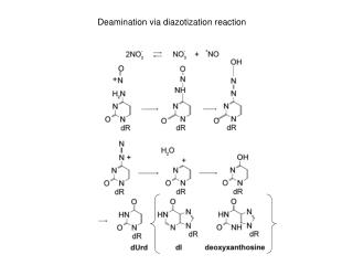 Deamination via diazotization reaction