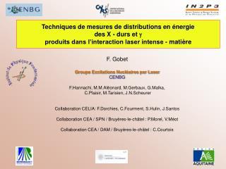 F. Gobet Groupe Excitations Nucléaires par Laser CENBG