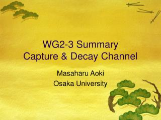 WG2-3 Summary Capture & Decay Channel