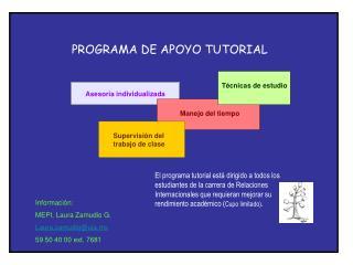 PROGRAMA DE APOYO TUTORIAL