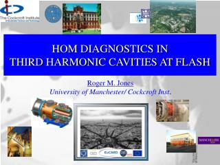 HOM DIAGNOSTICS IN  THIRD HARMONIC CAVITIES AT FLASH
