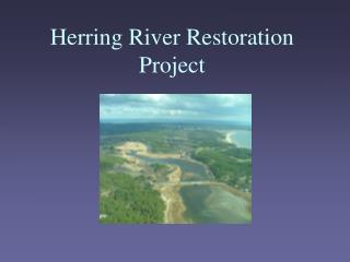 Herring River Restoration Project