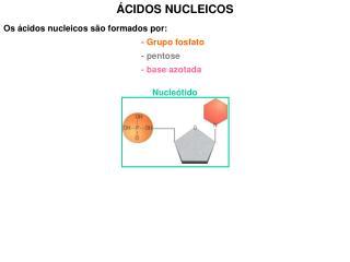 Os ácidos nucleicos são formados por: