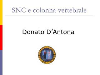 SNC e colonna vertebrale