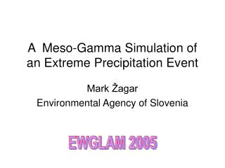 A  Meso-Gamma Simulation of an Extreme Precipitation Event