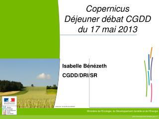 Copernicus Déjeuner débat CGDD  du 17 mai 2013
