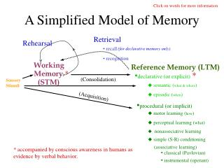A Simplified Model of Memory