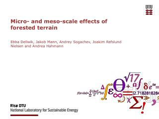 Micro- and  meso -scale effects of forested terrain