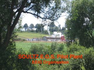 SOULTZ E.G.S. Pilot Plant EEIG Organisation