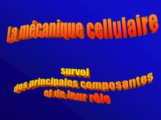 La m canique cellulaire