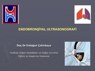 Doç Dr Erdoğan Çetinkaya Yedikule Göğüs Hastalıkları ve Göğüs Cerrahisi
