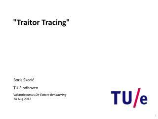 """Traitor Tracing"""