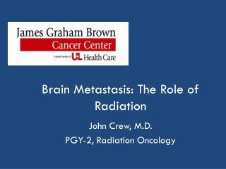 Brain Metastasis: The Role of Radiation