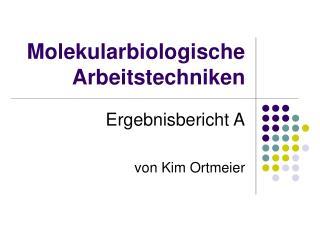 Molekularbiologische Arbeitstechniken