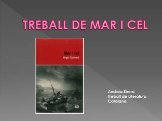 TREBALL DE MAR I CEL