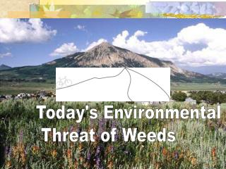 Todays Environmental  Threat of Weeds
