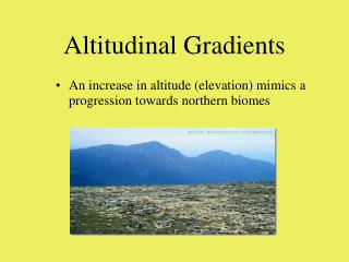 Altitudinal Gradients
