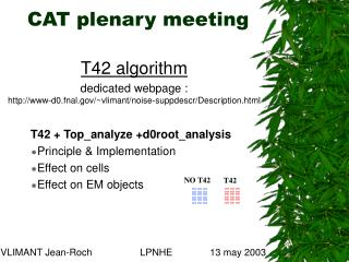 CAT plenary meeting