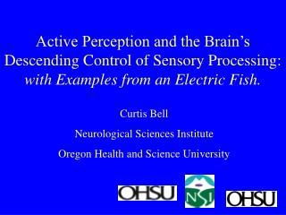 Curtis Bell Neurological Sciences Institute Oregon Health and Science University