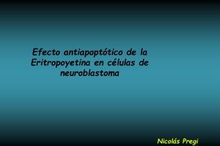 Efecto antiapopt tico de la Eritropoyetina en c lulas de neuroblastoma