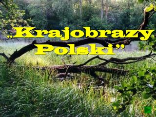 """ Krajobrazy  Polski """