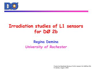 Irradiation studies of L1 sensors for DØ 2b