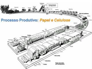 Processo Produtivo :  Papel  e  Celulose