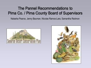 The Pannel Recommendations to Pima Co.