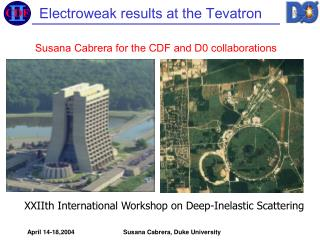 Electroweak results at the Tevatron