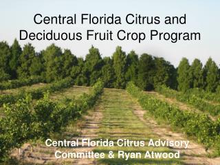 Central Florida Citrus and Deciduous Fruit Crop Program