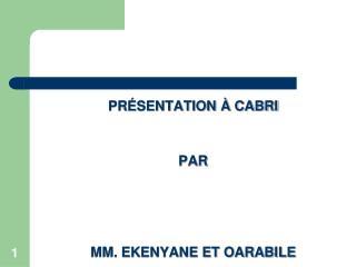 PRÉSENTATION À CABRI  PAR MM. EKENYANE ET OARABILE