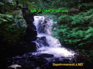 Sepehrmanesh.z,MD