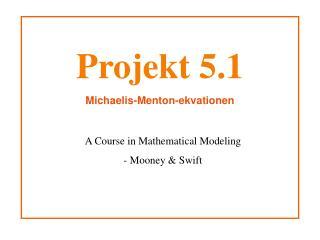 Projekt 5.1