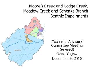 Moore's Creek and Lodge Creek, Meadow Creek and Schenks Branch  Benthic Impairments