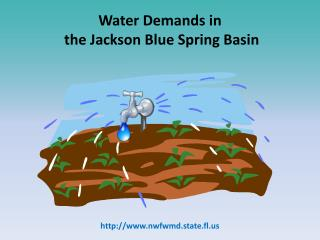 Water Demands in  the Jackson Blue Spring Basin