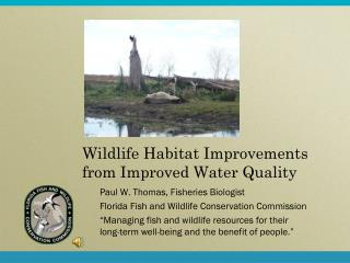 Wildlife Habitat Improvements from Improved Water Quality