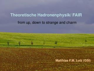 Theoretische Hadronenphysik/ FAIR