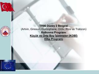 TR90 Düzey 2 Bölgesi  (Artvin, Giresun, Gümüşhane, Ordu, Rize ve Trabzon) Kalkınma Programı