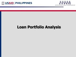 Loan Portfolio Analysis