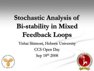 Stochastic Analysis of  Bi-stability in Mixed Feedback Loops