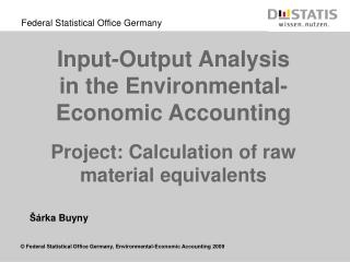 Input-Output Analysis in the Environmental-Economic Accounting