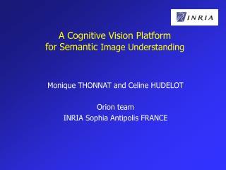 A Cognitive Vision Platform for Semantic  Image Understanding