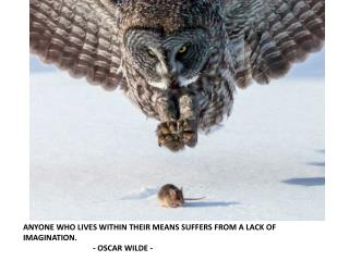 ANYONE WHO LIVES WITHIN THEIR MEANS SUFFERS FROM A LACK OF IMAGINATION. - OSCAR WILDE -