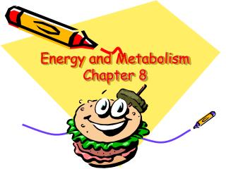 Energy and Metabolism Chapter 8